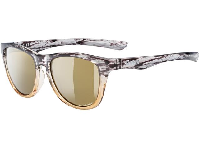 UVEX LGL 48 Colorvision Glasses amber transparent/mirror champagne